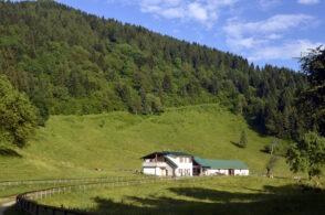 Malghe in affitto: il Comune mette all'asta le tre strutture di Valmorel