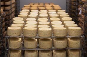 Stop ai dazi commerciali Usa-Ue: «Penalizzano i nostri formaggi»