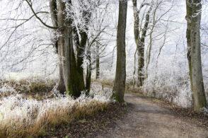Inverno pieno, superati i -10°C sulla montagna bellunese