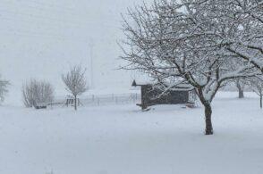 Neve per quaranta giorni e una settimana: il proverbio aveva ragione