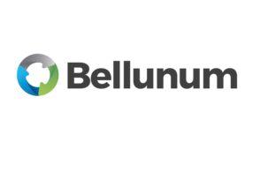 Bellunum cresce: entrano in società Feltre, Sospirolo e i Comuni dell'Alpago