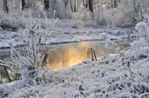 Nevoso e gelido. Gennaio 2021 da record per il freddo