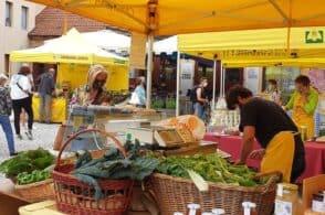 Agricoltura a km zero: torna il mercato in Piazza Piloni