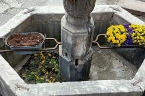 Atto vandalico a Borgo Piave: «Strappati i fiori dalla fontana»